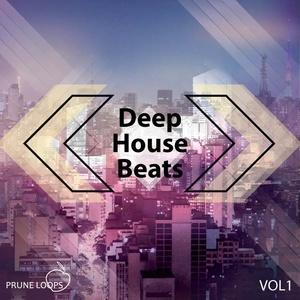 Deep House Beats Vol.1 - Prune Loops
