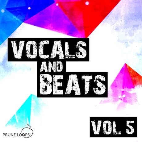Vocals and Beats Vol 5