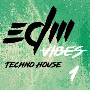 EDM Vibes Vol 1 - Techno House