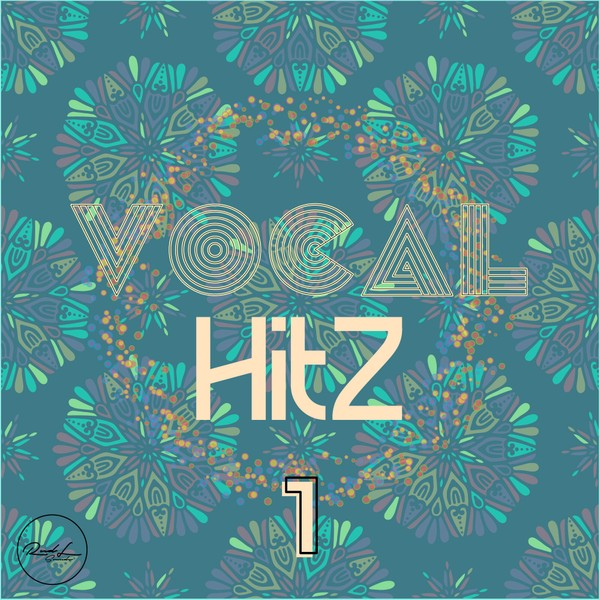 Vocal Hits Vol 1