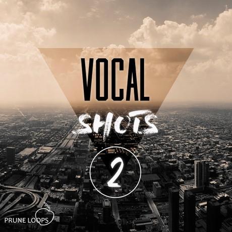 Vocal Shots Vol 2