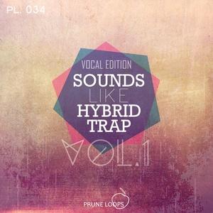 Sounds Like Hybrid Trap Vol 1 (Vocal Edition)
