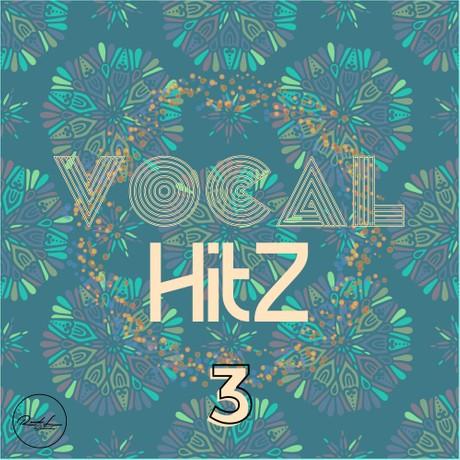 Vocal Hits Vol 3