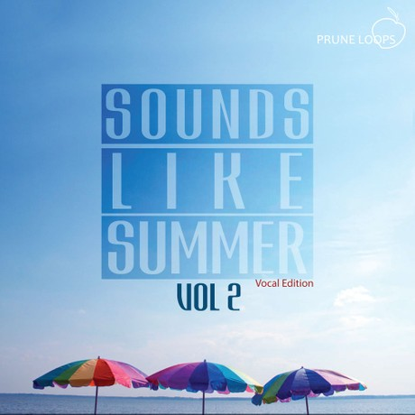 Sounds Like Summer Vol 2 (Vocal Edition)