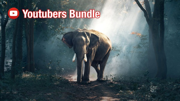Youtubers Bundle