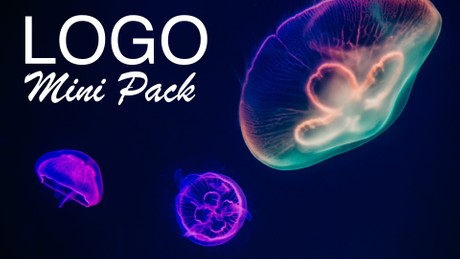 Logo Mini Pack