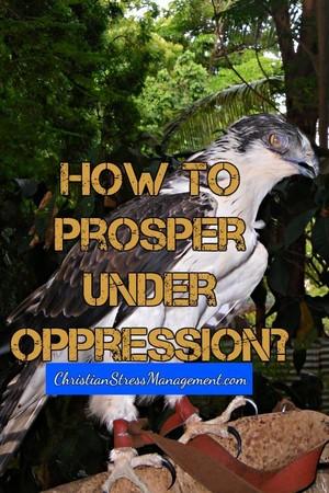 How to Prosper Under Oppression