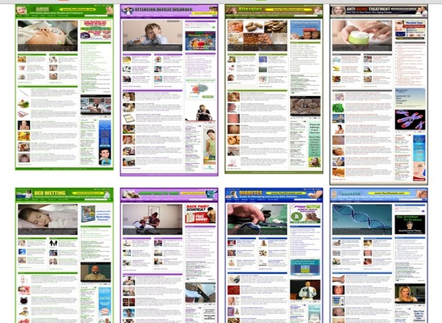 Acne - Health Big Potential Niche Fully Monetize WordPress Turnkey Blog