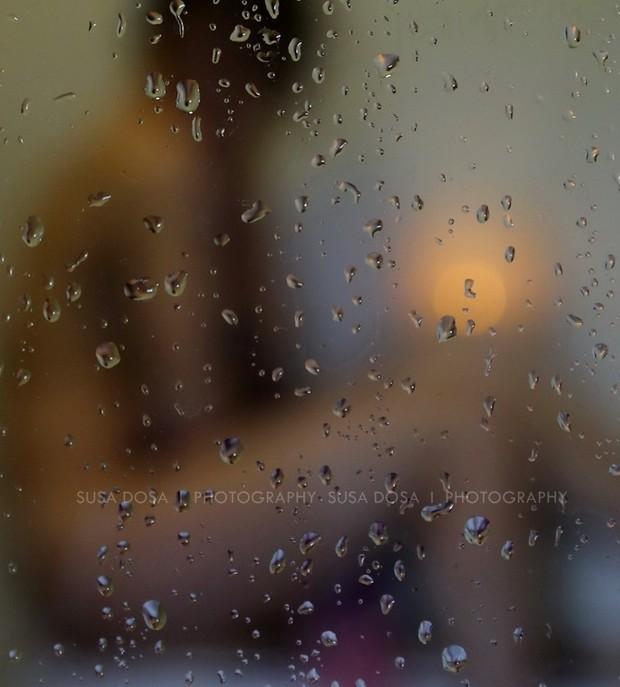 - Trough the Window -