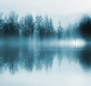 Foggy Blue Winter scene