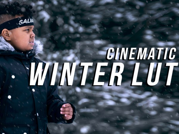 Cinematic Snow Lut