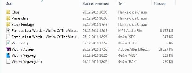 Victim Project Files