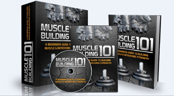 Muscle Building 101 - Building Muscle & Increasing Strength