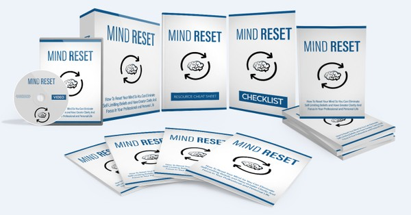 Mind Reset - How To Reset Your Mind And Focus In Your Professional and Personal Life
