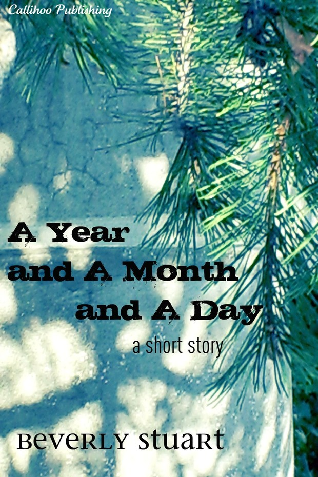 A Year and a Month and a Day (mobi)
