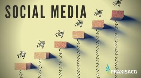 Social Media Dev &  Management