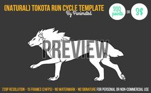 Tokota Run Cycle Template