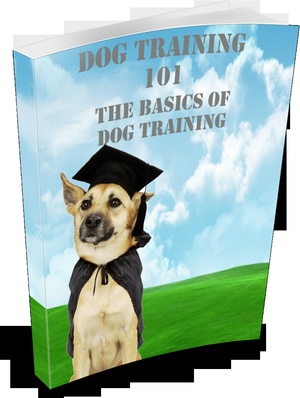 Cheap Amazing eBook With Master Resell Rights Dog Training 101, The Basics Of Dog Training