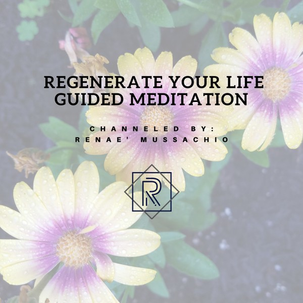 Regenerate Your Life Guided Meditation