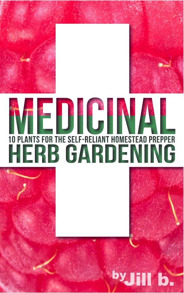 Medicinal Herb Gardening - 10 Plants for the Self-Reliant Homestead Prepper