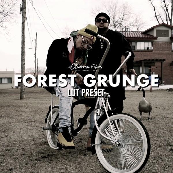 Forest Grunge LUT