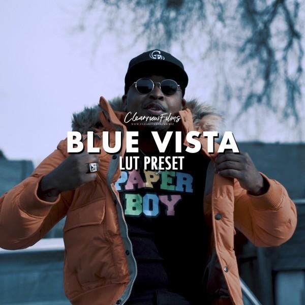 Blue Vista LUT