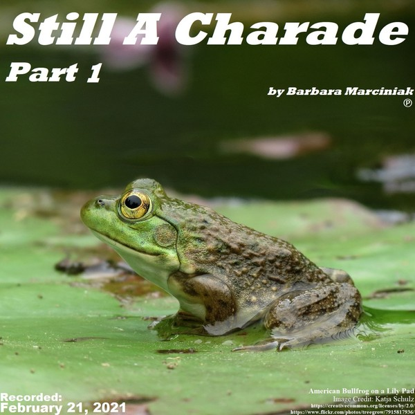 Still A Charade - Part 1
