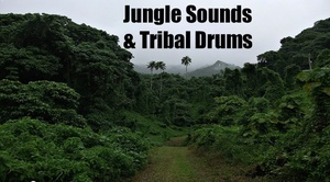 Ambience Hub: Jungle Sounds with Tribal Drums