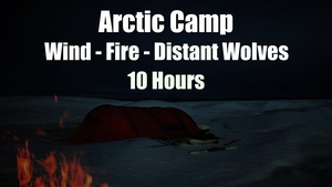 Ambience Hub - Arctic Camp - Wind - Fire - Distant Wolves - 10 Hours