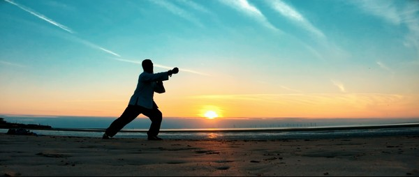 Master Xingbo Liu - 24 steps Yang style Tai Chi Rear View - Tutorial
