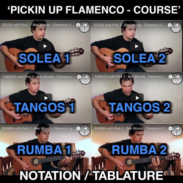 PICKIN' UP FLAMENCO - COURSE