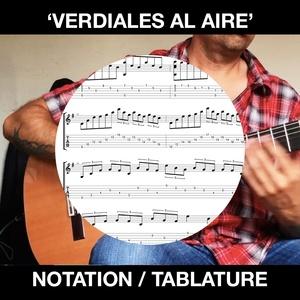 'VERDIALES AL AIRE' FLAMENCO GUITAR - BEN WOODS
