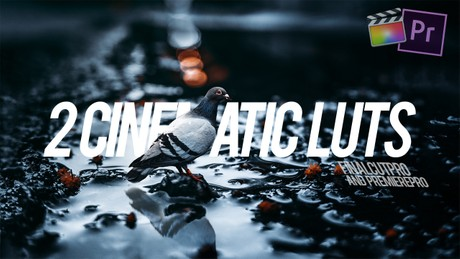 2 Cinematic LUTs for FCPX and Premiere Pro