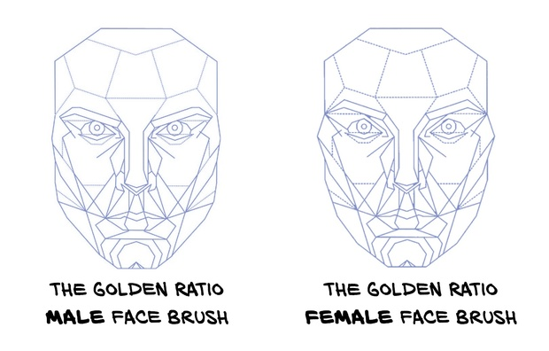 FREE Golden Ratio Brushes: 10+ FIBONACCI Shape Brushes for Procreate