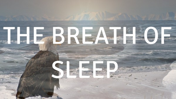 The breath of Sleep A guided meditation to help you sleep