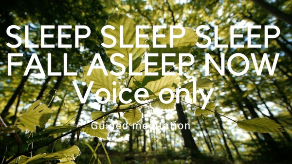 SLEEP SLEEP SLEEP FALL ASLEEP NOW Guided meditation for sleep