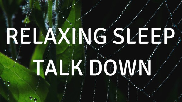 Relaxing Sleep talk down A guided meditation for sleep