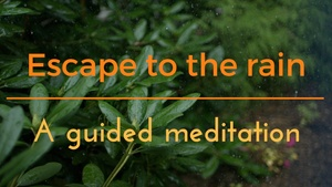 ESCAPE TO THE RAIN - A GUIDED MEDITATION TO GIVE YOU AN INSTANT HOLIDAY
