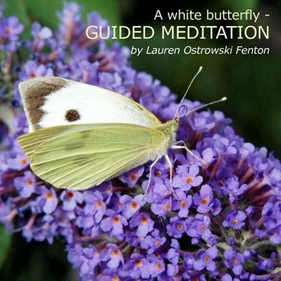 A white butterfly- Guided meditation