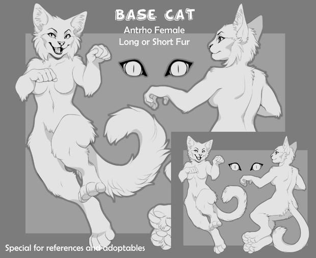 Base Cat (Antrho Female)