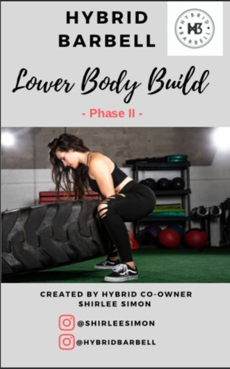 Hybrid Lower Body Build , Phase II