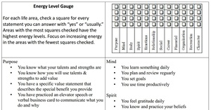 Energy Level Gauge