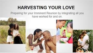 TFMwebinar - July 2015 — Harvesting your Love©