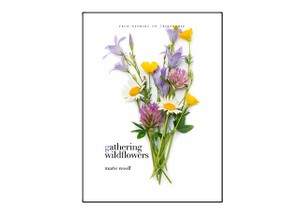 GATHERING WILDFLOWERS, by Marie Woolf (serialized):  Chapter 1