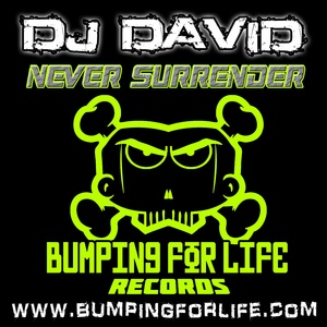 Dj David - Never Surrender