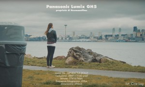 LUT Cinematograph for Sony