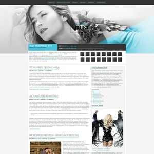 Light WordPress Theme