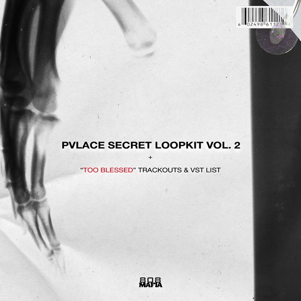 PVLACE Secret Loopkit Vol.2 + TOO BLESSED Trackouts + VST LIST