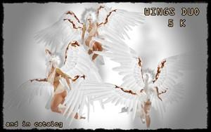WINGS ALAS ANGELES DUO FILE