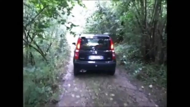 006 : Revving and cranking in the woods